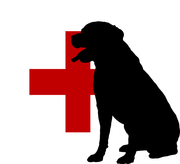 disease control logo