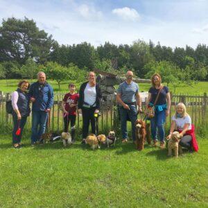 Puppy School Puppy Training Walk